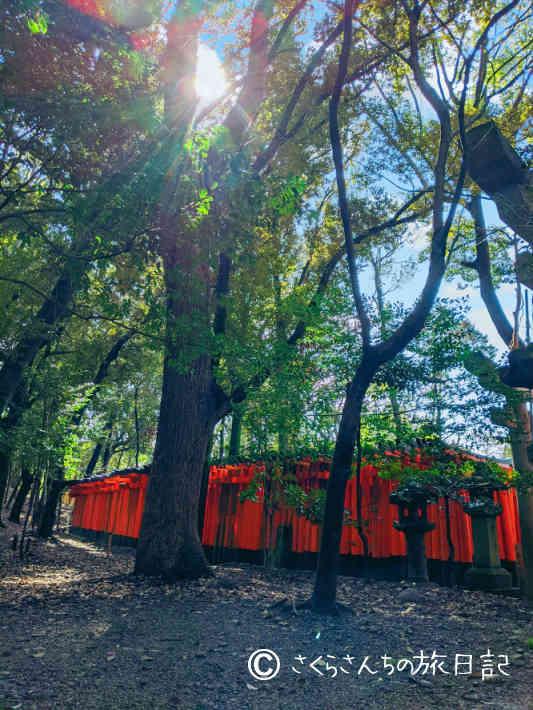 京都の観光地が空いてる。伏見稲荷大社もすいてる。